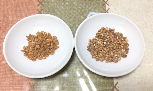 roasted_brown_rice_recipe_macrobiotics02_12