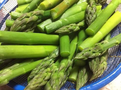 07-best-season-of-asparagus-in-hokkaido