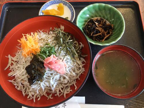 江ノ島しらす丼